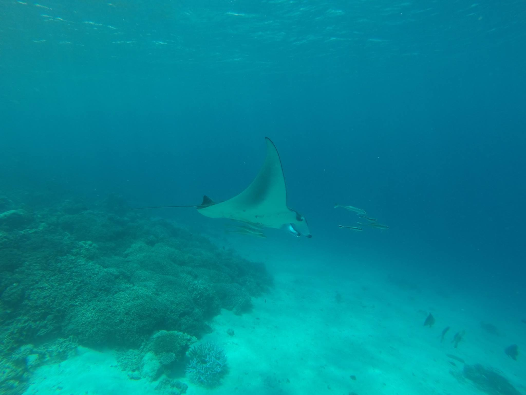Maldives 11